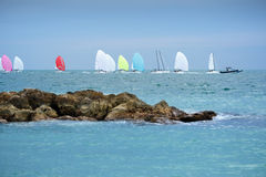 Colorful sailing boats on the sea. Panoramic view Royalty Free Stock Photography