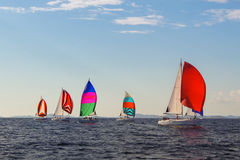 colorful sails under a blue sky Royalty Free Stock Image