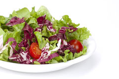 Colorful salad Stock Photography