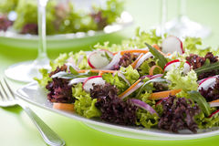 Colorful Salad Royalty Free Stock Image
