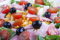 Colorful salad Stock Images