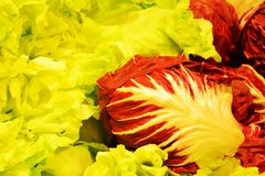 Colorful salad background royalty free stock photo