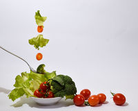 Colorful salad floating in the air Royalty Free Stock Photos
