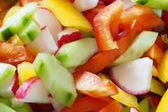 Colorful salad Stock Image