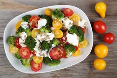 Colorful salad. Stock Photography