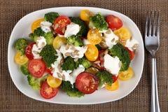 Colorful salad. Stock Photos