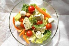 Colorful salad Stock Image