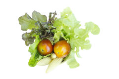 Colorful Salad ingredient on top view Stock Photo