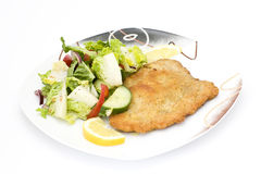 Colorful salad and schnitzel Royalty Free Stock Images