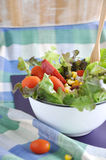 Colorful salad with wooden fork Royalty Free Stock Image