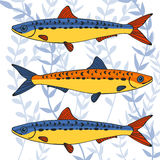 Colorful sardines collection Stock Photography