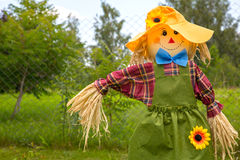 Colorful scarecrow is dressed in clothes Stock Photography