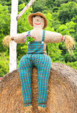 Colorful scarecrow is dressed in clothes Royalty Free Stock Photography