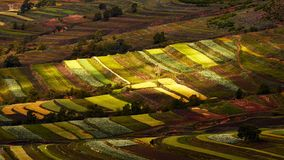A colorful scene in Bashang grassland in autumn harvest time season and lots of clouds in the sky Stock Photography