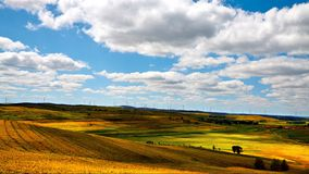 A colorful scene in Bashang grassland in autumn season and lots of clouds in the sky Stock Photos
