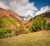 Colorful scene in the Mazeri village, Upper Svaneti, Georgia, Europe. royalty free stock photos