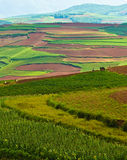 Colorful scenery of hongtudi (2) Royalty Free Stock Photography