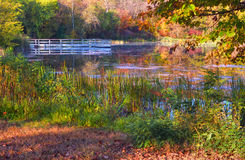 Colorful scenic Landscape in HDR Royalty Free Stock Photography