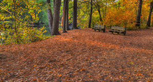 Colorful scenic Landscape in HDR with bench Stock Photo