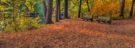 Colorful scenic Landscape in HDR with bench Stock Photography
