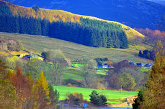 Colorful scenic view of the Scottish highlands in summer Royalty Free Stock Image