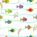 Colorful sea fishes. Seamless pattern. Stock Image