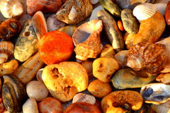 Colorful sea pebbles Royalty Free Stock Photography