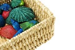 Colorful sea shells Stock Photo