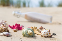 Colorful sea shells bottle background Royalty Free Stock Photography