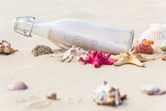Colorful sea shells bottle background Stock Photos