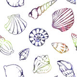 Colorful sea shells  seamless pattern texture background Stock Photography