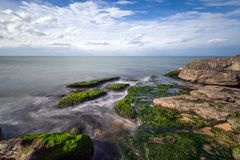 Colorful sea shore with green algae. Scenery, long exposure royalty free stock photos