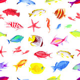 Colorful sea watercolor seamless vector print. Colorful sea fishes watercolor seamless vector print Royalty Free Stock Photos