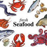 Colorful seafood banner, poster design with place for text Royalty Free Stock Image