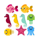 Colorful seahorse fish jellyfish starfish. Set on white background vector icon Royalty Free Stock Image