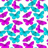 Colorful seamless background from butterfly stock photos