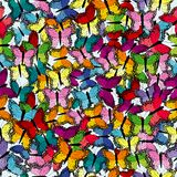 Colorful seamless background with butterflies. Colorful seamless background with colored butterflies stock illustration