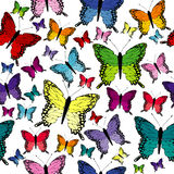 Colorful seamless with butterflies Royalty Free Stock Photography