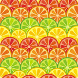 Colorful seamless citrus background Stock Images