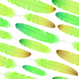 Colorful seamless feather vector pattern Royalty Free Stock Image