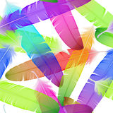 Colorful seamless feather vector pattern Stock Images