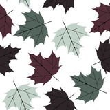 Colorful seamless pattern with autumn leaves Stock Photo