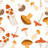 Colorful seamless pattern background with different mushrooms Royalty Free Stock Image