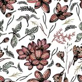 Colorful seamless pattern with floral elements and white background. Colorful floral seamless pattern with flowers, buttons and leaves on white background Stock Image