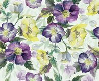 Colorful seamless pattern of flowers. watercolor stock illustration