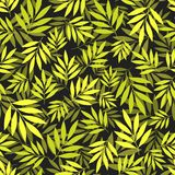 Colorful seamless pattern. With green leaves on the dark gray background Royalty Free Stock Photography