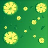 Colorful seamless pattern of green lime slices stock illustration
