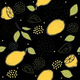 Colorful Seamless Pattern with lemon Royalty Free Stock Photo