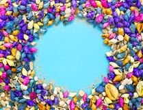 Colorful seashells background with copy space royalty free stock image