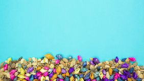 Colorful seashells background with copy space stock photos